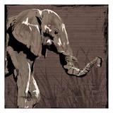Elephant Walk Brown Prints by  OnRei