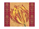 Tulip Power I Premium Giclee Print by Carolee Vitaletti