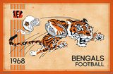 CINCINNATI BENGALS - RETRO LOGO 14 Photo