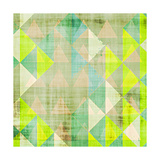Citrus Geometry III Premium Giclee Print by Amy Lighthall