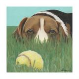 Dlynn's Dogs - Sunny Poster by Dlynn Roll