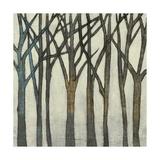 Birch Line II Prints by Jennifer Goldberger
