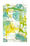 Splish Splash II Print by Jennifer Goldberger