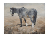 The Color Blue Premium Giclee Print by Kathy Winkler
