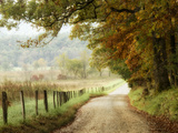 Autumn on a Country Road Photographic Print by Danny Head