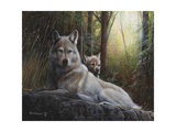 Recumbent Wolves Premium Giclee Print by Kevin Daniel