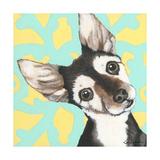 Dlynn's Dogs - Jules Vern Art by Dlynn Roll