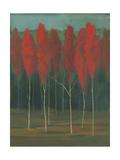 Autumn Splendor Poster by Julie Joy
