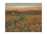 Poppy Path to Home II Premium Giclee Print by Julie Joy