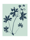 Indigo and Mint Botanical Study III Posters by  Vision Studio