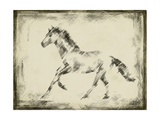 Equine Study II Prints by Ethan Harper