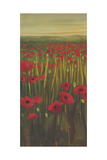 Red Poppies in Field I Premium Giclee Print by Julie Joy