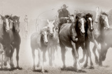The Chase III Photographic Print by David Drost
