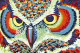 Carolee Vitaletti - Bright Eyes Speciální digitálně vytištěná reprodukce