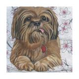 Dlynn's Dogs - Cody Poster by Dlynn Roll
