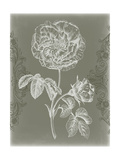 Floral Relief I Print by Jennifer Goldberger