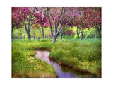 Summer Spring Giclee Print by Chris Vest