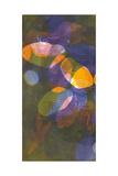 Fireflies I Prints by Carolyn Roth
