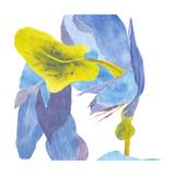 Surprise Indigo III Kunstdrucke von Carolyn Roth