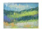 Impasto Field II Prints by Jennifer Goldberger