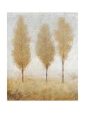 Autumn Springs I Premium Giclee Print by Tim O'toole