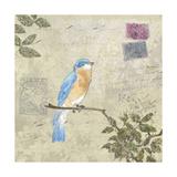 Bird and Postage I Giclee-tryk i høj kvalitet af Rick Novak