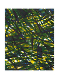 Green Thicket I Poster by Jodi Fuchs