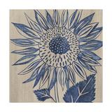 Indigo Sunflower Plakater af Chariklia Zarris