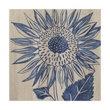 Indigo Sunflower Prints by Chariklia Zarris