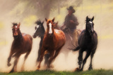 The Chase IV Photographic Print by David Drost