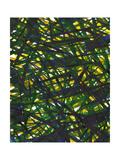 Green Thicket II Prints by Jodi Fuchs