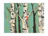 Birch Grove on Teal II Premium Giclee Print by Jade Reynolds