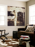 Ostrich in Profile Wall Mural by Theo Westenberger