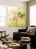 Dreamy Image Of A Tiny Female Hummingbird Feeding On A Pink Zinnia Wall Mural by Sari ONeal
