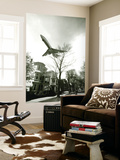 Airliner Above Residential Area Wall Mural