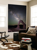 The Milky Way and Delicate Arch in Arches National Park Wall Mural by Dmitri Alexander