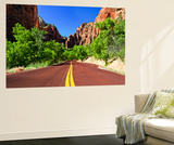 Scenic Drive - Zion National Park - Utah - United States Wall Mural by Philippe Hugonnard