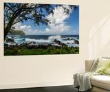 Waves Crashing Upon Rocks, Laupahoehoe Park, Hawaii, USA Wall Mural by  Jaynes Gallery