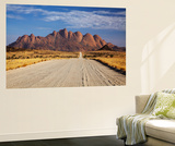Road to Spitzkoppe, Namibia Wall Mural by David Wall