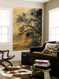 Diablo Tree Design Wall Mural by Vincent James