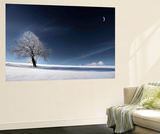 Blue Like Snow Wall Mural by Philippe Sainte-Laudy