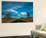 Joshua Tree National Park III Wall Mural by Erin Berzel