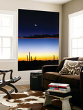 Moonrise Wall Mural by Douglas Taylor