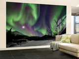 Aurora Borealis VIII Wall Mural – Large by Larry Malvin