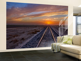 Solar Express I Wall Mural – Large by Mark Geistweite