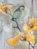 Bluebird I Posters by Terri Burris