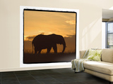 Radiant Africa 2 Wall Mural – Large by Susann Parker