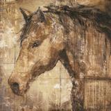 Cavalier Posters by Elizabeth Jardine