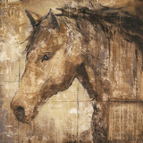 Cavalier Posters by Liz Jardine