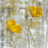 Yellow Flowers I Poster by Carol Black